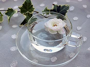 水の入った透明なカップ